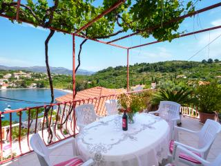 Apartment Oreb 6,Kolocep - Dubrovnik-Neretva County vacation rentals