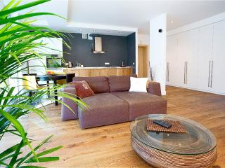 Deluxe 1BR Apartment with Balcony-Central Vilnius - Vilnius vacation rentals