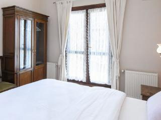 Cool Galata Flat with Balcony/ for  4 guests - Istanbul vacation rentals