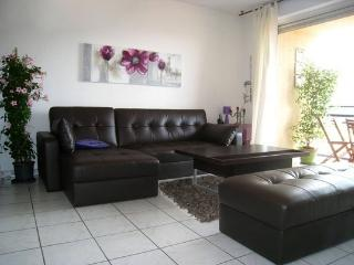 Nice 1 bedroom Condo in Cannes with Internet Access - Cannes vacation rentals