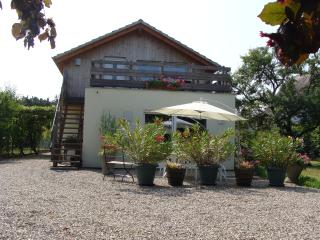 Nice Gite with Internet Access and Satellite Or Cable TV - Strasbourg vacation rentals