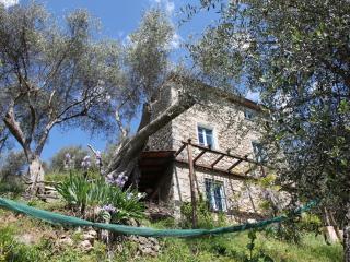 Idyllic Home on the Versilia hills - Camaiore vacation rentals
