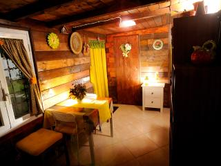 Nice Condo with Deck and Internet Access - Fregene vacation rentals