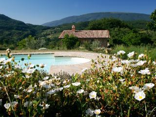 Lorenzetti - Casa Rosa - Assisi vacation rentals