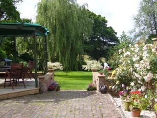 Hop cottage Robertsbridge East Sussex - Robertsbridge vacation rentals