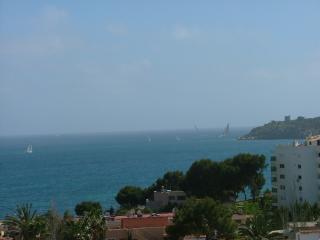 Sea views, 120m2 terrace, air con, double glazing - Palma Nova vacation rentals