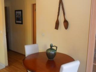 Nice Condo with Internet Access and A/C - Vela Luka vacation rentals