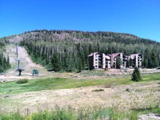 Special PRICING!! Location & Best Price! Stones throw from Chair 1 - Ski IN/OUT! 207 - Brian Head vacation rentals