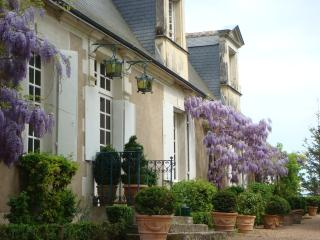 3 bedroom Manor house with Internet Access in Monts - Monts vacation rentals