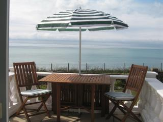 Lovely 3 bedroom Brighton House with Deck - Brighton vacation rentals