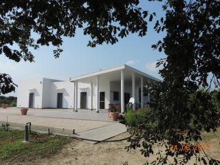 Mesagne, villa alle porte del Salento - Mesagne vacation rentals
