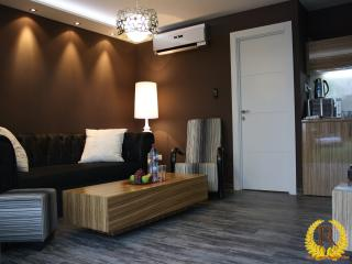 Spacious Luxury Suite w/ Garde - Eilat vacation rentals