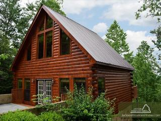 A Walk in the Clouds  Game Room  Hot Tub  Fireplace  Pets  Free Nights - Gatlinburg vacation rentals