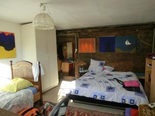 Guestroom 12km from Zürich: NoSmokeNearZurich - Maur vacation rentals