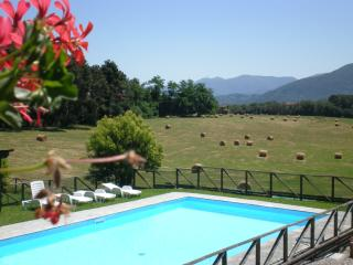 Lovely apartment in the nature - Lucca vacation rentals