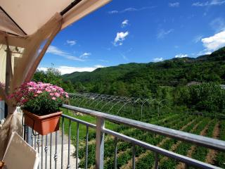 Comfortable 2 bedroom Condo in Albenga - Albenga vacation rentals