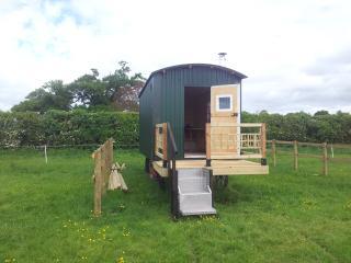 Shepherds Hut - Upton upon Severn vacation rentals