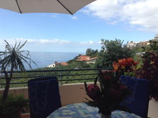 DO NOT MISS OUT...Apartment with ocean view + - Arco da Calheta vacation rentals