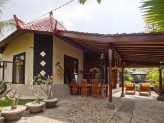 Nice Villa with A/C and DVD Player - Lovina vacation rentals