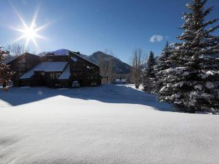 Bigwood Condo - Ketchum vacation rentals