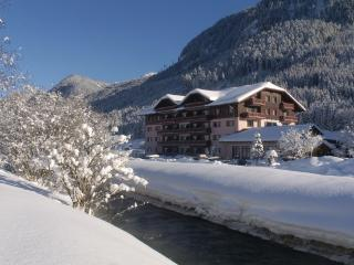 Cosy & comfortable apartment in 4* Hotel Complex - Gosau vacation rentals