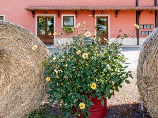 Agriturismo La Meridiana Fatto - Guidonia Montecelio vacation rentals