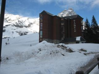 Ski in ski out, central, cozy flat wifi included - Breuil-Cervinia vacation rentals