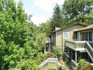 Village Green D4 is a light & spacious condo on Main Street, Blowing Rock - Blowing Rock vacation rentals