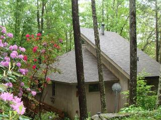 A Birds View a vacation in the trees awaits you in this 4 bedroom home. - Blowing Rock vacation rentals