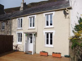 Lovely 2 bedroom Llangrannog Cottage with Deck - Llangrannog vacation rentals