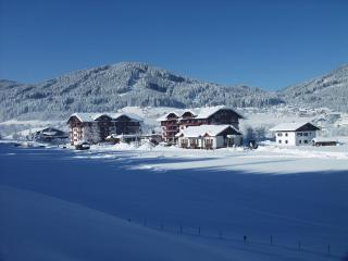 Gosau - comfortable apartment - Gosau vacation rentals