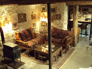 Nice 3 bedroom Farmhouse Barn in Carcassonne - Carcassonne vacation rentals