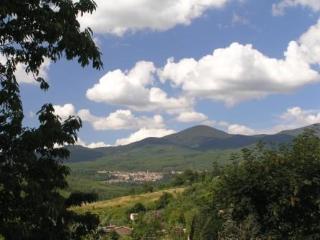 Organic Tuscan farm in breathtaking landscape - Selva di Santa Fiora vacation rentals
