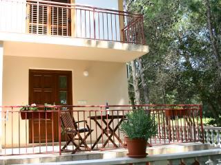The White House - Bibinje vacation rentals