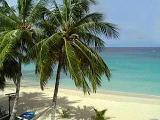 LeMarida Suites.  Walk to Beaches & Shopping. - Speightstown vacation rentals