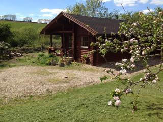 Lovely 2 bedroom Cabin in Combpyne - Combpyne vacation rentals