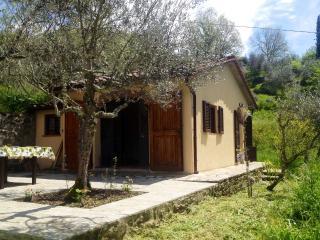 Nice Villa with Television and Central Heating - Anghiari vacation rentals