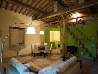 il Paluffo Frantoio house - Certaldo vacation rentals