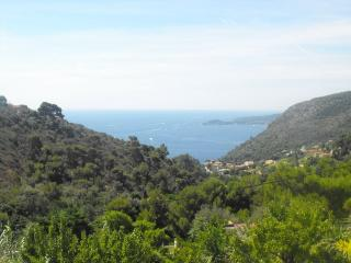 Nice Villa with Internet Access and Television - Eze vacation rentals