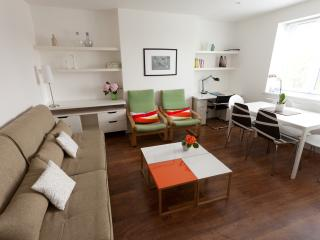 MODERN Apartment 15 min to Oxford St - London vacation rentals