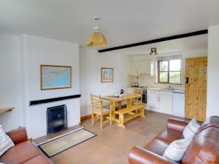 Perfect Cottage with Internet Access and Dishwasher - Kinsale vacation rentals