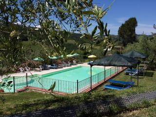 Nice Condo with Internet Access and Satellite Or Cable TV - San Dalmazio vacation rentals