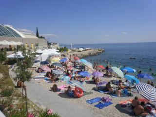 Croatie, baie de Kvarner, a louer appart. vacances - Kastav vacation rentals