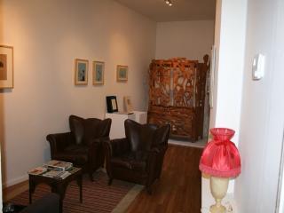 Maison d'artistes au coeur de Bruxelles - Brussels vacation rentals