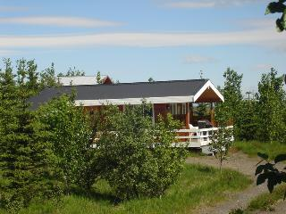 Beautiful House with Internet Access and Television - Reykholt vacation rentals