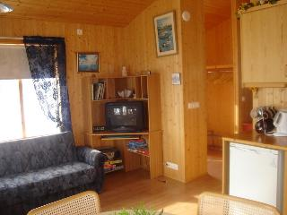 Beautiful 1 bedroom House in Reykholt - Reykholt vacation rentals