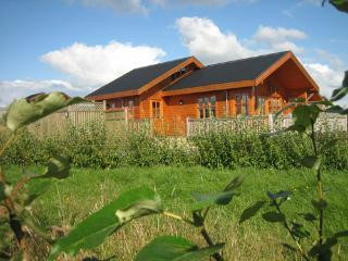 Comfortable House with Internet Access and Television - Selfoss vacation rentals