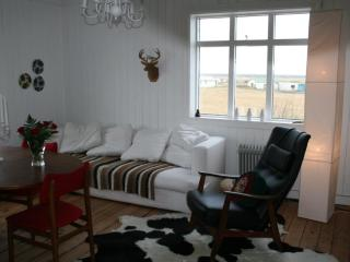 Beautiful 2 bedroom House in Hella - Hella vacation rentals