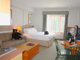 Hearthstone Lodge Village Ctr - HS325 - Sun Peaks vacation rentals
