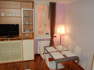 ALBIROLI APARTMENT Charming and quiet city centre - Emilia-Romagna vacation rentals